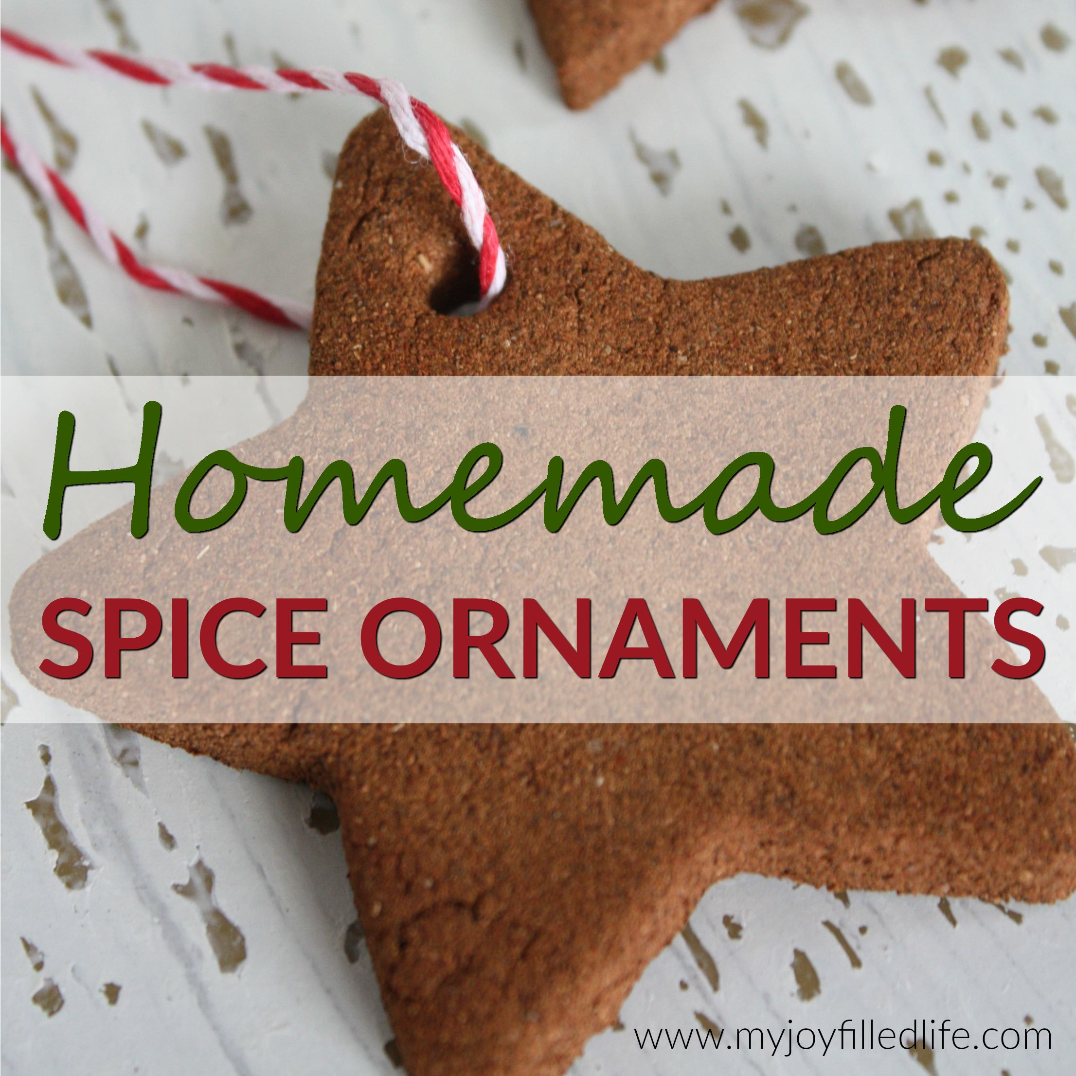 Homemade Spice Ornaments